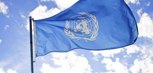 مما تتكون هيئة الأمم المتحدة