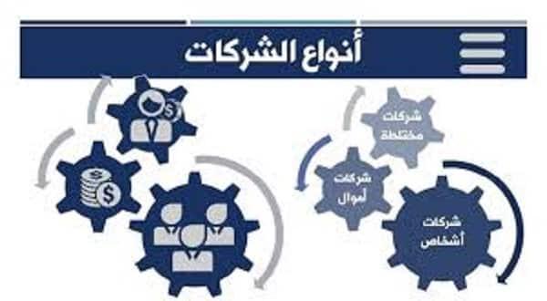 انواع الشركات التجارية فى مصر