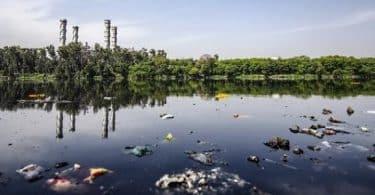 بحث عن أضرار تلوث الماء على النبات