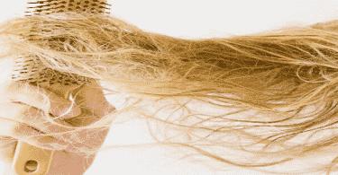 طريقة حماية الشعر من التقصف