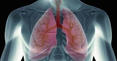 معدل التنفس الطبيعي للانسان