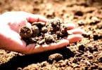 أنواع التربة في العالم