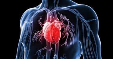 أعراض مرض القلب وعلاجه