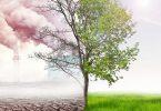 أنواع التلوث البيئي وأضراره