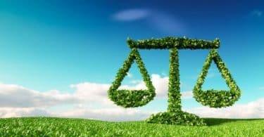 التوازن البيئي في الإسلام