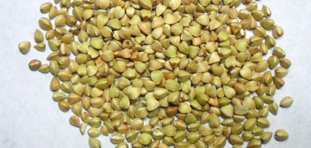 الحنطة السوداء فى مصر