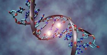الهندسة الوراثية وتطبيقاتها
