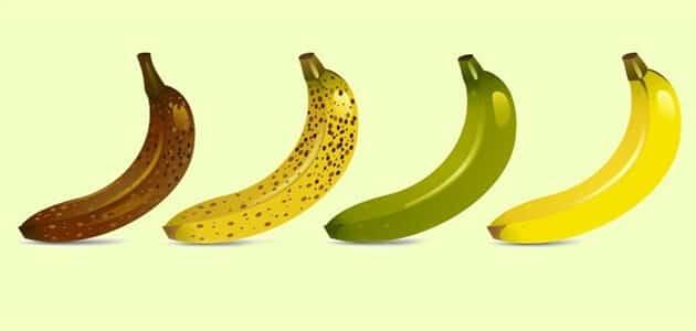انواع الموز وفوائده
