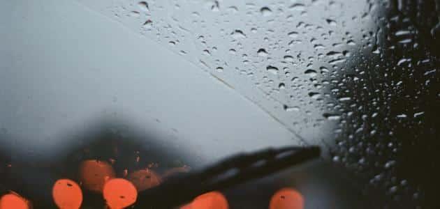 تفسير حلم المطر للعزباء في الصيف معلومة ثقافية