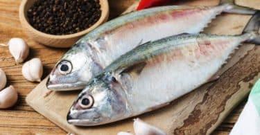 تفسير حلم شخص يعطيني سمك
