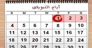 جدول ايام التبويض عند المراة للحمل