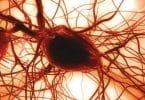 زيادة الصفائح الدموية في الدم