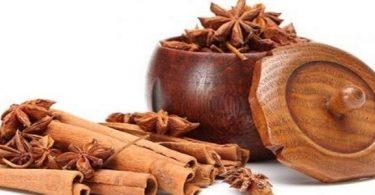 شجرة القرفه وفوائدها