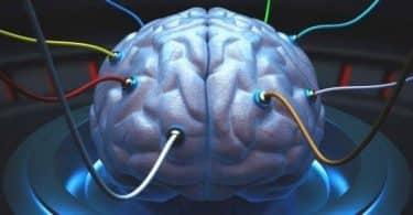 علاج كهرباء المخ طبيعيا