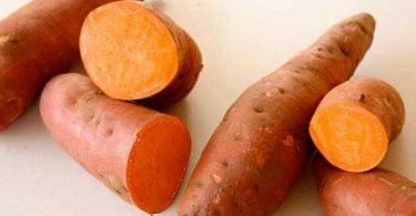 فوائد البطاطا الحلوة للمعدة