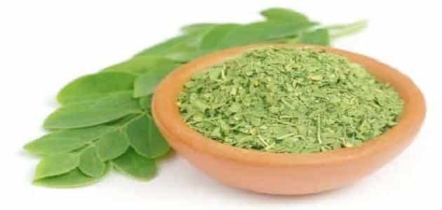 فوائد عشبة المورينجا للعقم