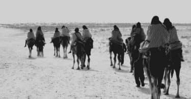 قبيلة مطير في مصر