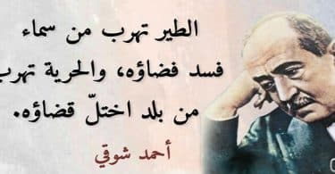 قصائد احمد شوقي كاملة