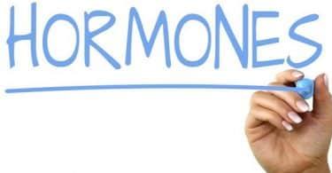 ما هي الهرمونات وما وظيفتها
