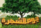 أسبوع الشجرة في المملكة العربية السعودية