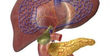 كيفية تنظيف الكبد من السموم في يوم واحد؟
