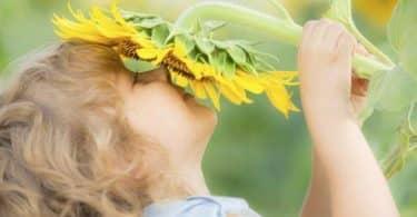 كيفية علاج فقدان حاسة الشم والتذوق بسبب الزكام بالاعشاب؟