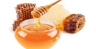أسعار العسل في مصر