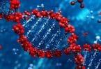 اسماء مركبات حيوية يتم تصنيعها في الغدد؟