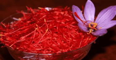الزعفران وإستخداماته