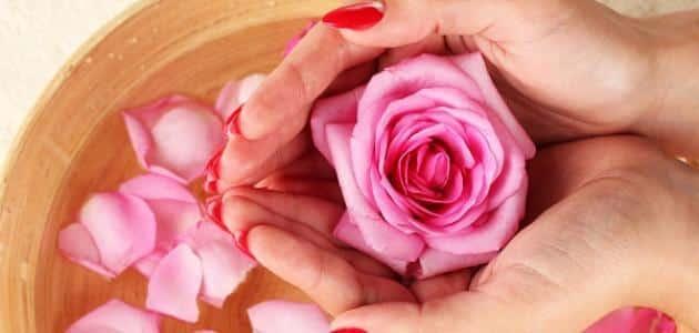 الورد في المنام للمتزوجة معلومة ثقافية