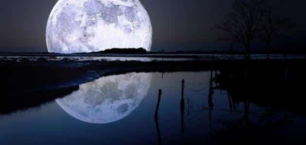ضوء القمر في المنام معلومة ثقافية