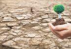 أسباب التصحر وتدهور الأراضي الزراعية