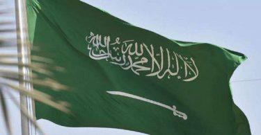 اجمل شعر عن المملكة العربية السعودية