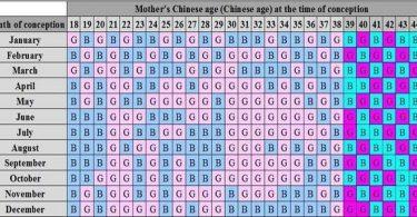 الجدول الصيني للحمل وكيفية استخدامه
