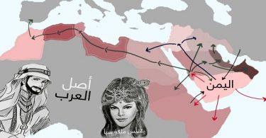 من هم أصل العرب مع الدليل