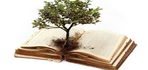 أفضل انواع الكتب لتعزيز الثقافة