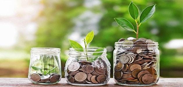 استعمال الموارد والأموال استعمالًا معتدلًا هو؟
