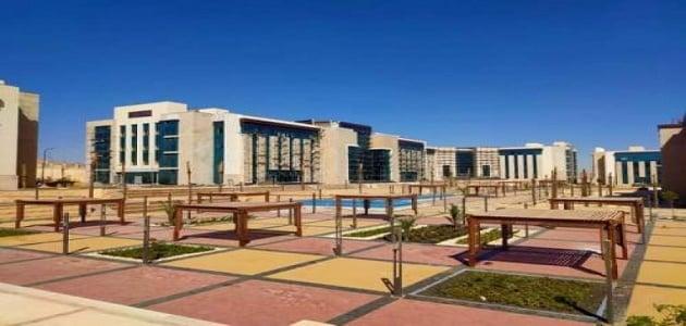الجامعات الأهلية في مصر
