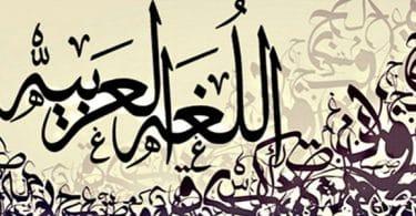 السمات الخاصة باللغة العربية
