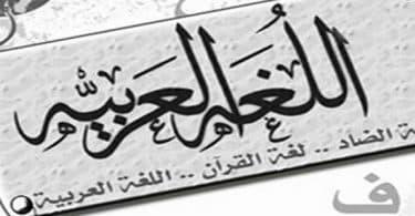 عدد كلمات اللغة العربية بدون تكرار