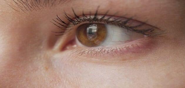 علامات الحمل من العين وطرق شعبية اخرى للتاكد من الحمل