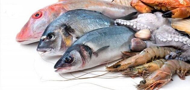 فوائد السمك بأنواعه وأسمائه