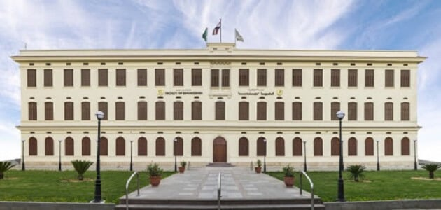 كلية هندسة جامعة القاهرة الاقسام