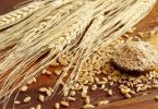 ما هو تفسير القمح في المنام للعزباء والمتزوجة والرجل ؟
