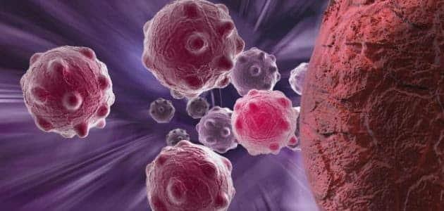 ما هو خط الدفاع الأول في الجسم ضد المرض المعدي