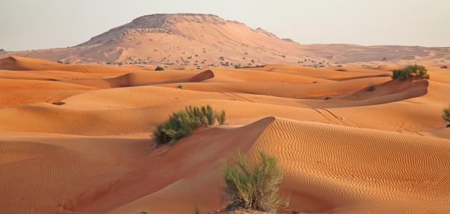 من أكبر الهضاب في شبه الجزيرة العربية
