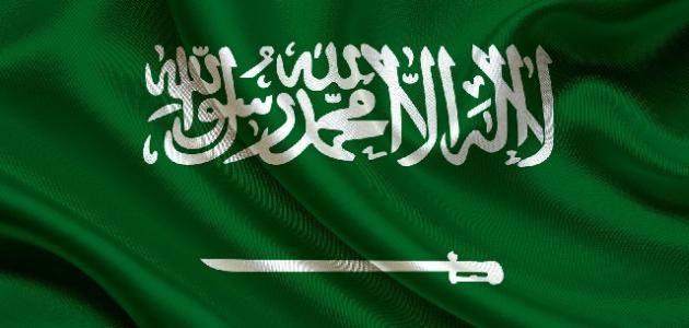 نظام الحكم في المملكة العربية السعودية