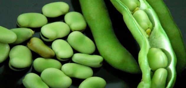 الفول الأخضر في المنام للعزباء والمتزوجة والرجل