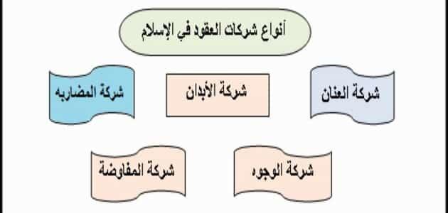 تعريف الشركات في الفقه الاسلامي واحكامه