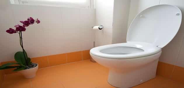 تفسير حلم دخول الحمام وقضاء الحاجة للعزباء